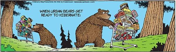 1020_bears.jpg