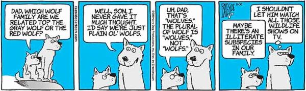 wolves-10.jpg