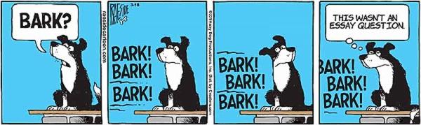 bark-5.jpg