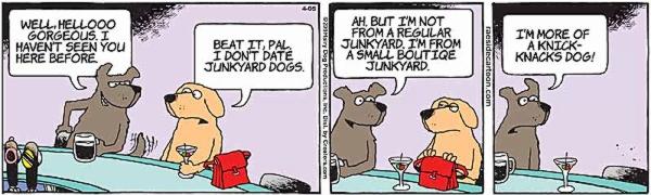 junkyard-2.jpg