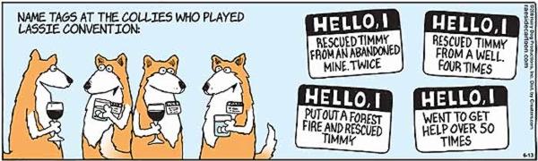 lassie-3.jpg