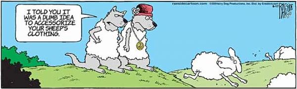 sheep-11.jpg