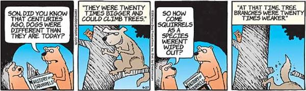 squirrels-4.jpg